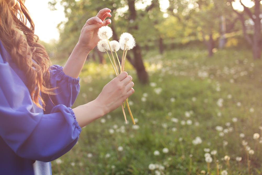 woman blowing dandelion in spring garden. Springtime. Trendy girl at sunset in spring landscape background. Allergic to pollen of flowers. Spring allerg